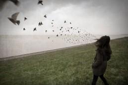 Vögel fliegen aus den Haaren